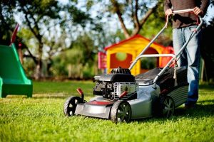 Finding the best lawn mower for small lawns